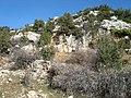 Necropolis-uzunca burç - panoramio.jpg