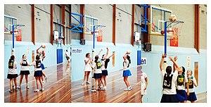 Rules of netball - Image: Netball allibons