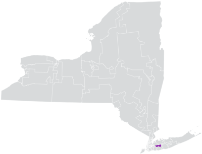 New York State Senate District 6 (2012).png
