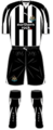 Newcastle united 2010-2011.PNG