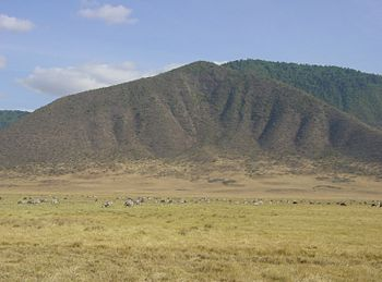 Ngorongoro-Crater-animals.jpg
