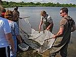 Ninigret National Wildlife Refuge, RI. Credit- USFWS (13873449855).jpg