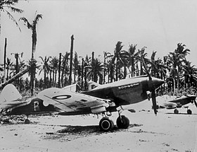 Two single-engined military aircraft parked in front of palm trees