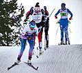 Nordic World Ski Championships 2017-02-26 (33229845255).jpg