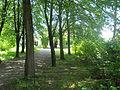Nowy Sącz, teren skansenu (Sądecki Park Etnograficzny) 9.JPG