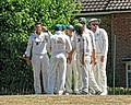 Nuthurst CC v. Henfield CC at Mannings Heath, West Sussex, England 018.jpg