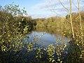 Ogston Reservoir - northern tip late autumn - geograph.org.uk - 278429.jpg