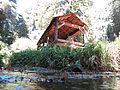 Old-Mill-Park-Mill-Valley-Florin-WLM-5.jpg
