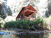 Old-Mill-Park-Mill-Valley-Florin-WLM-5.jpg