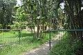 Old Gurukul Area - ISKCON Campus - Mayapur - Nadia 2017-08-15 1939.JPG