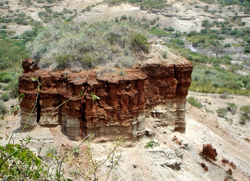 File:Olduvai gorge - Flickr - gailhampshire.jpg