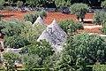 Olivi e Trulli - panoramio.jpg