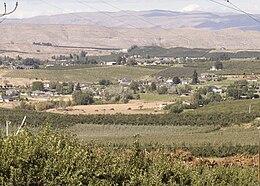Orchards near Selah WA
