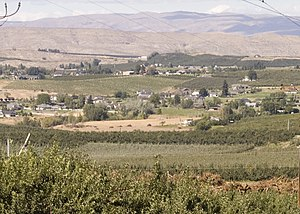 Yakima County, Washington - Orchards near Selah