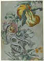 Ornamental Design with Fruit and Flowers (recto); Flower Stalk with Leaves (verso) MET 61.557.3.jpg