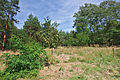 Přírodní park Velký Kosíř, okres Prostějov (04).jpg