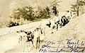 Pack horses and people on trail to Olympic Hot Springs, nd (WASTATE 1530).jpeg