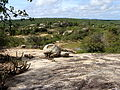 Paisagem da Caatinga Paraibana.JPG