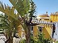 Palácio Nacional da Pena em Sintra (37104577602).jpg