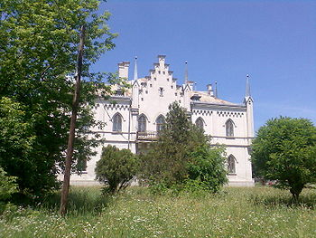 http://upload.wikimedia.org/wikipedia/commons/thumb/e/e6/Palatul_de_la_Ruginoasa.jpg/350px-Palatul_de_la_Ruginoasa.jpg