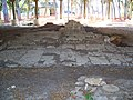 Palm Coast Mala Compra main1.jpg
