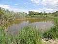 Parc natural de s'Albufera de Mallorca 07.jpg