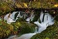 Parco Naturale Paneveggio Pale di San Martino - sorgenti rio Pradidali in Val Pradidali.jpg