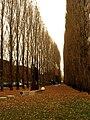 Parco scultura san donà 1.JPG