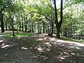 Park Andrzeja Błachańca Rosarium Zgorzelec.JPG