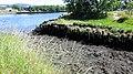 Park Quay basin, River Clyde, Erskine.jpg