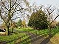 Park in Mottram.jpg