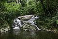 Parque Estadual da Pedra Branca - Pau da Fome 07.jpg