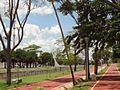 Parque do rio Preto (2).jpg