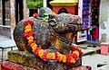 Pasupati Nandi Visap Pasupati Temple Hanumandhoka Kathmandu Nepal Rajesh Dhungana.jpg