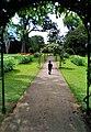 Path and Roads - Sri Lanka.jpg