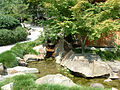 Path in the Birmingham Botanical Gardens.jpg