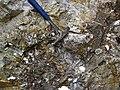 Pegmatitic granite (White Cap Pegmatite, Paleoproterozoic, ~1.7 Ga; White Cap Mine, east of Keystone, Black Hills, South Dakota, USA) 2 (23505427619).jpg