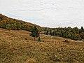 Peisaj langa Poiana Brasov - panoramio.jpg