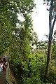 Perspektiven des Parque Nacional do Iguaçu 21 (22103444332).jpg