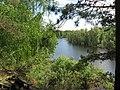 Pervomaysky District, Tomsk Oblast, Russia - panoramio (24).jpg