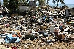Люди осматривают руины после цунами