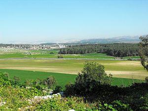 Shfela - Shfela lowlands