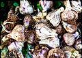 PikiWiki Israel 28685 bunch of Garlics.jpg
