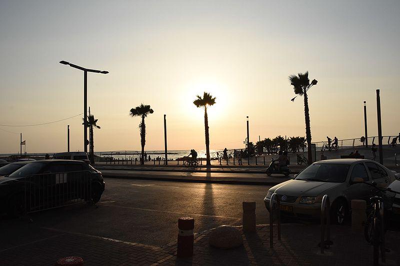 תל אביב - הסביבה שלי 2015