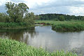 Place of a confluence of the river Guslitsa in the river Nerskaya 9027.jpg