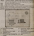 Plan of the Tomb of the Virgin Mary or Church of the Sepulchre of Saint Mary, in Kidron Valley, Jerusalem - Cootwijck Johannes Van - 1619.jpg