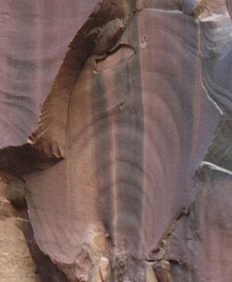 "Fracture (geology) - The concentric circles in this sandstone are ""plumose"" (plume-like) structures that can form during the formation and propagation of a fracture"