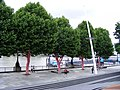 Polka dotted trees and Festival Pier - geograph.org.uk - 1397608.jpg