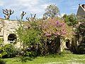 Pontoise (95), musée Tavet-Delacour, casemattes dans le jardin 1.jpg