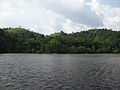 Pookode lake, Wayanad 02.JPG